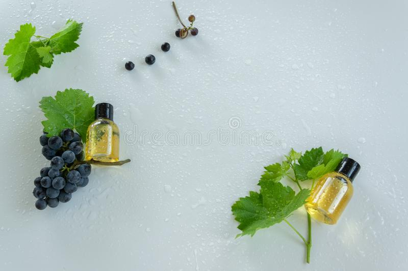 Natural skin care products with grape extracts . Healthy organic remedy. Superfood for the skin royalty free stock photos
