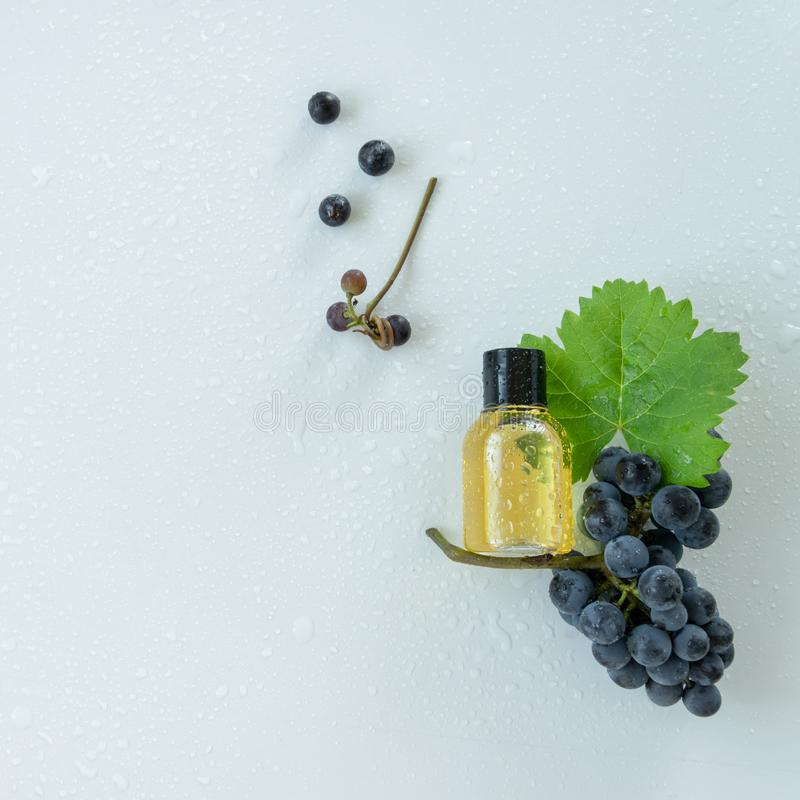 Natural skin care products with grape extracts . Healthy organic remedy. Superfood for the skin royalty free stock photography