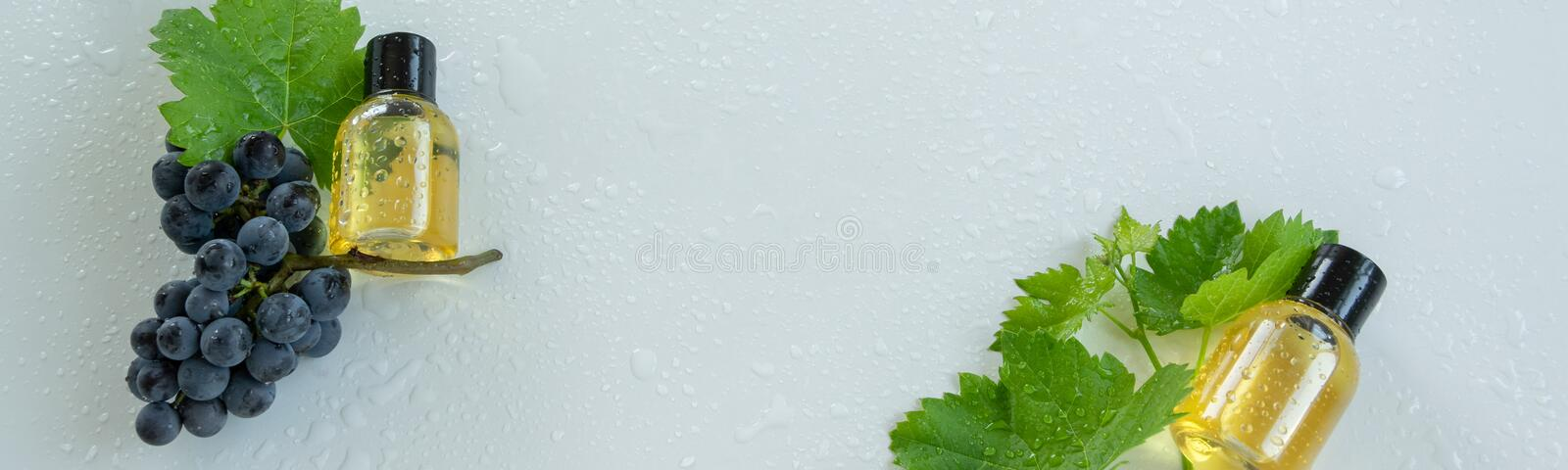Natural skin care products with grape extracts . Healthy organic remedy. Superfood for the skin royalty free stock photo