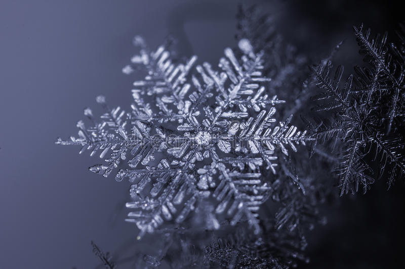 Natural snowflake crystal on dark background stock images