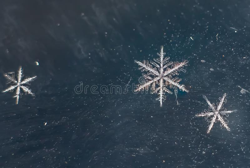Snowflake Natural Extreme Macro stock images