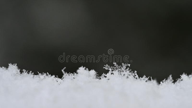 Natural snowflakes on snow, photo real snowflakes-Beautiful macro shot on winter and Christmas season. stock photos