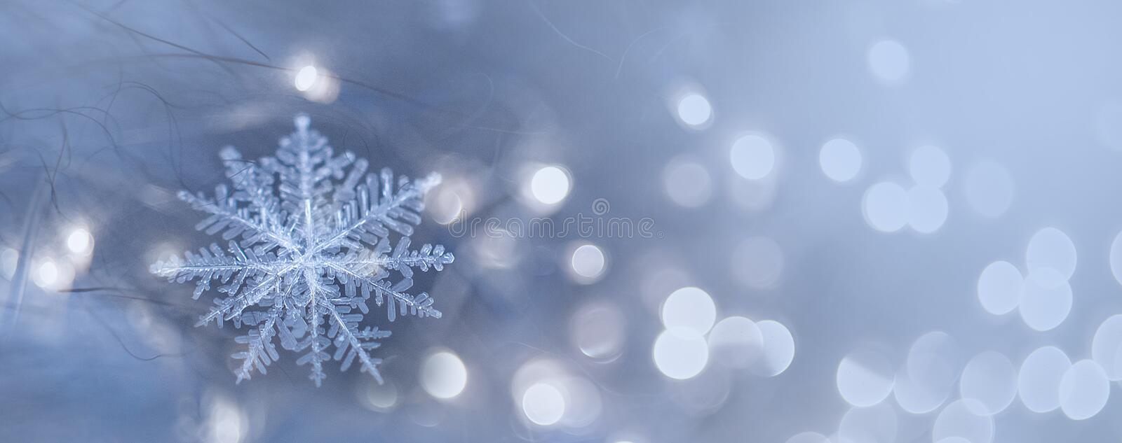 natural snowflakes on snow photo real snowflakes. Winter snow background. Snowflake Closeup. Macro photo. Copy space stock images