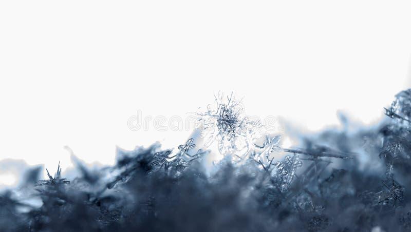 Natural snowflakes on snow. snow royalty free stock image