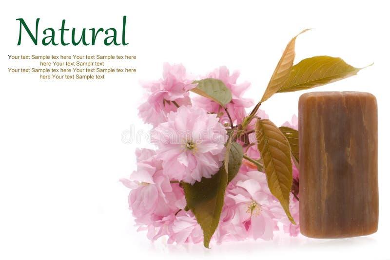 Natural soap royalty free stock photos
