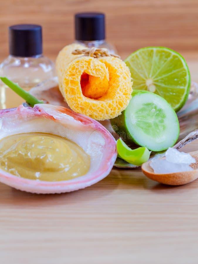 Natural Spa Ingrediënten stock foto