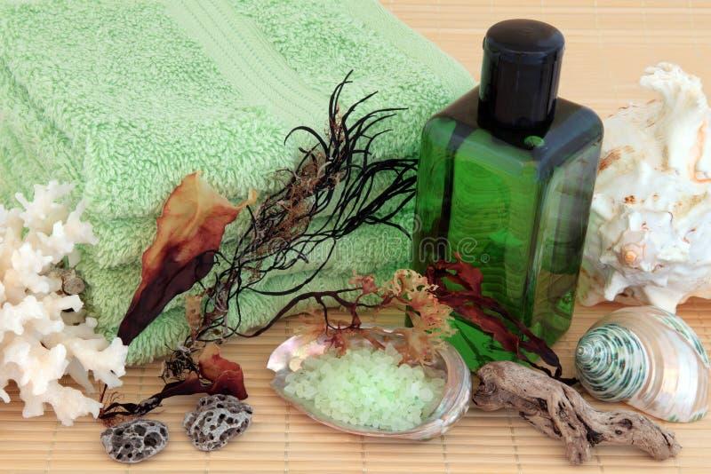 Natural Spa Producten stock afbeelding