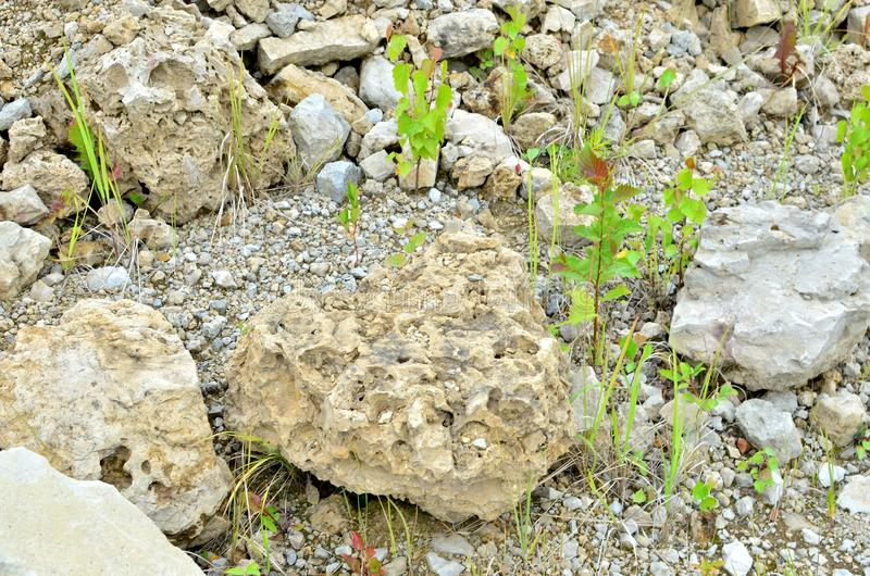 Natural stone dolomite in the limestone open-pit. Building materials, wall background, texture stock images