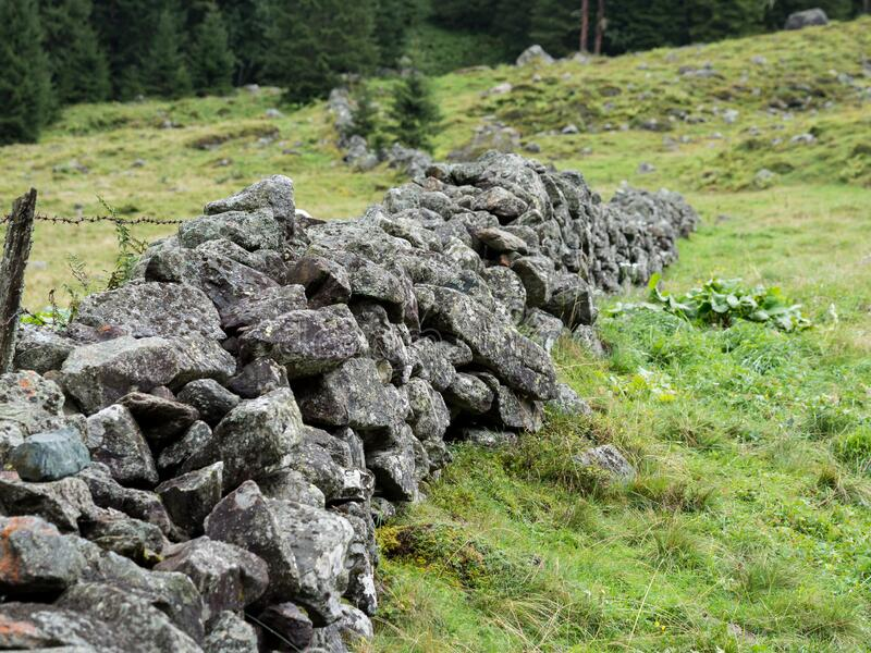 Natural stone fence on mountain pasture. And trees stock photography