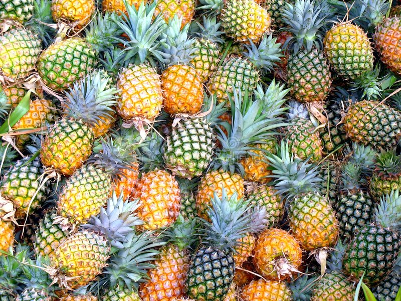 Natural sweet - pineapple. Natural sweet pineapple. Ripled pineapple kept at market. for sale. round shaped mouthwatering pineapple from diffrent side, shape royalty free stock photography