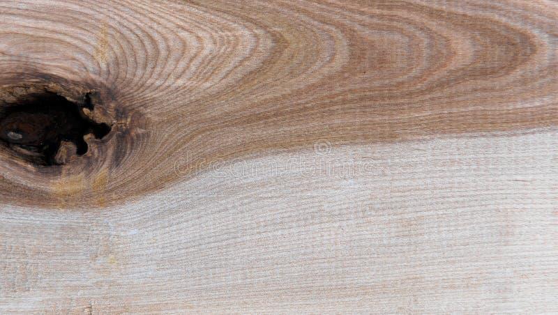 Natural Taiga birch wood grain texture pattern background. Taiga birch wood grain texture pattern background stock photography
