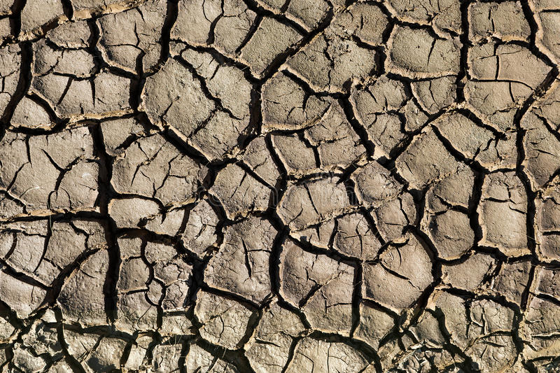Natural texture. Closeup of wet cracked ground. High contrast of light and shadow royalty free stock image