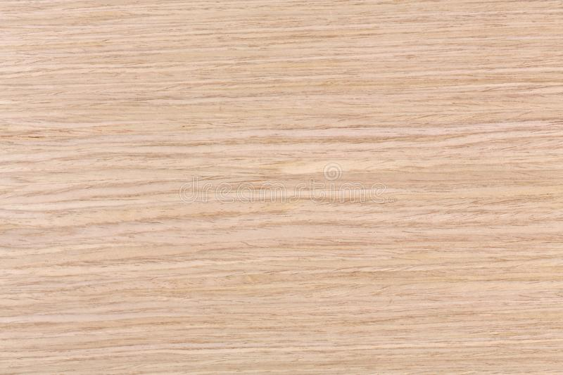 Natural texture of oak wood to use as background. royalty free stock photography