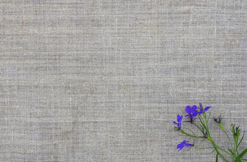Natural texture with small bouquet of violet flowers. Natural fabric rough background. stock photography
