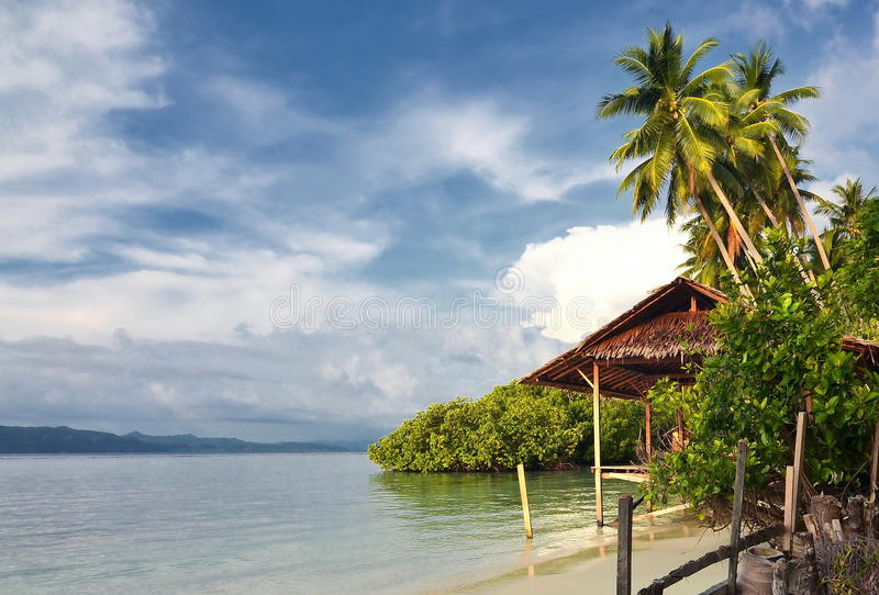 Natural Tropical Beach royalty free stock image