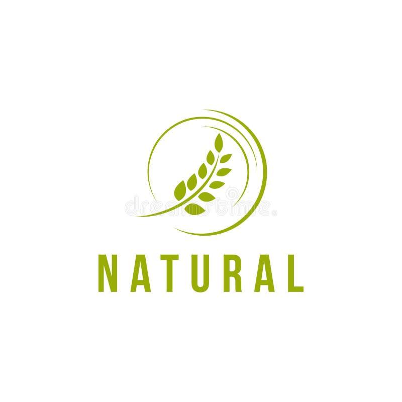 Natural Vector Template Design Illustration stock illustration