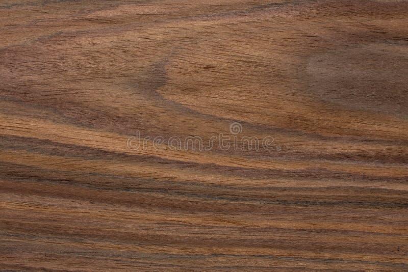 Natural veneer tetxture for your individual interior. royalty free stock photos