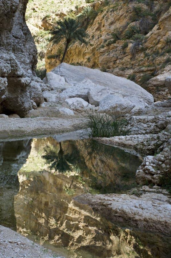 A natural wadi in Oman royalty free stock photo