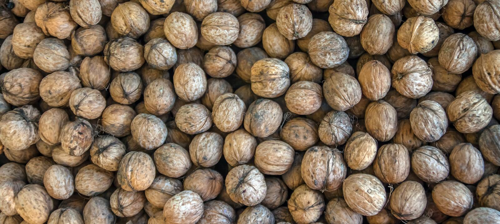 Natural walnut background pattern texture Abstract walnuts heap pattern background Blurred edges frame Natural food in-shell nuts royalty free stock images