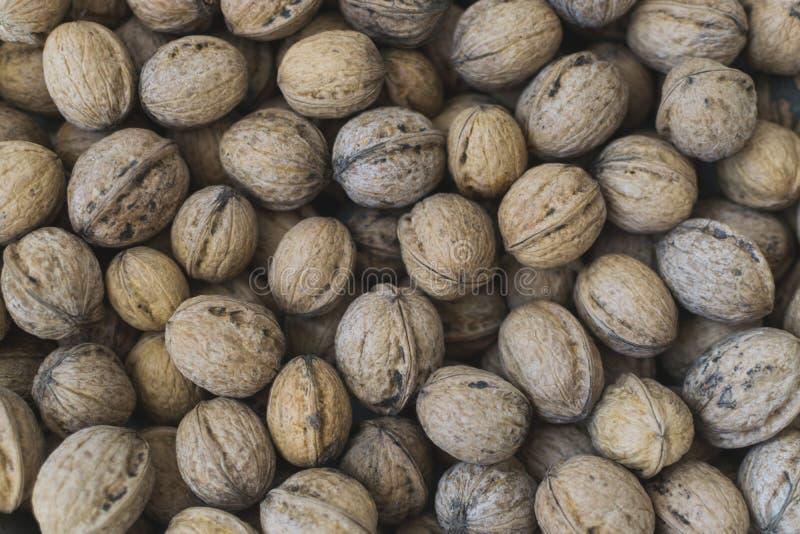 Fresh walnuts, full frame photo. Walnut background stock photos