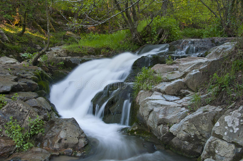 Natural waterfall. In tranquil green forest. Bursa Turkey royalty free stock photo