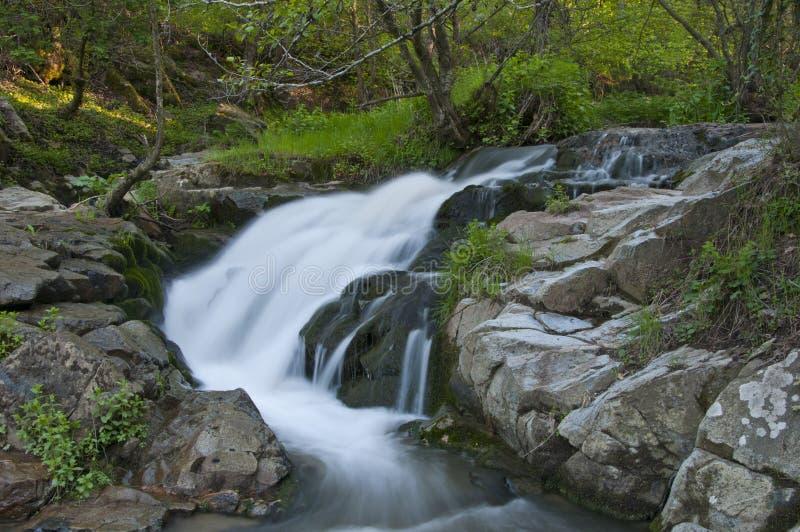 Natural waterfall royalty free stock photo