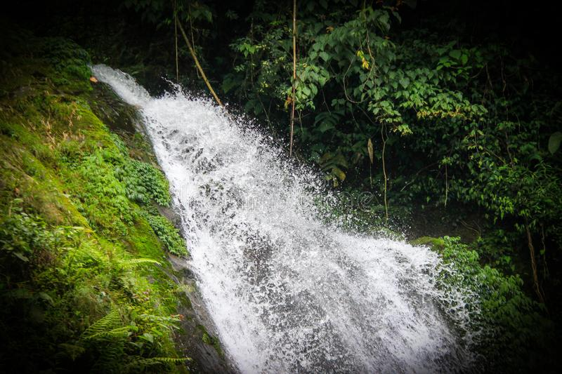 A natural waterfall in hills of sikkim, india in between forest vegetation.  stock photo
