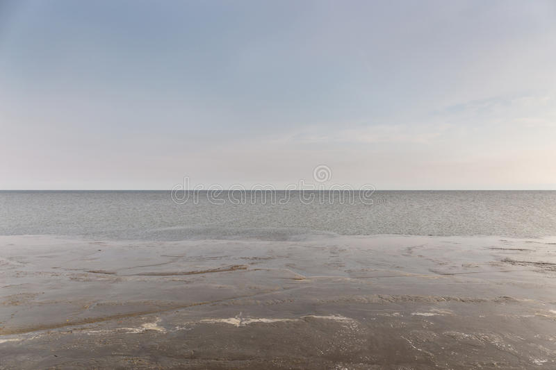 Natural wetland scene in tropical sea beach in Thailand. royalty free stock photo