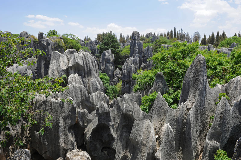 Natural wonders of China (stone forest) royalty free stock photo