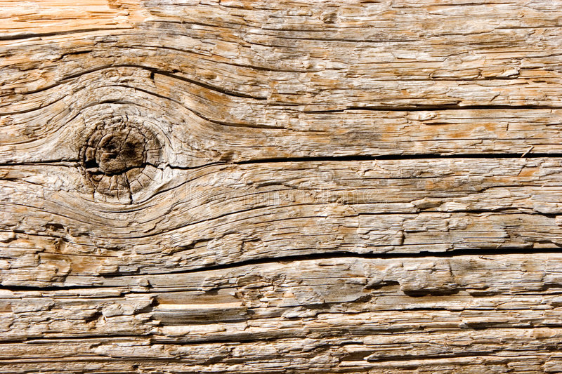 Natural wood texture  Natural Wood Texture Closeup Royalty Free Stock Photography ...