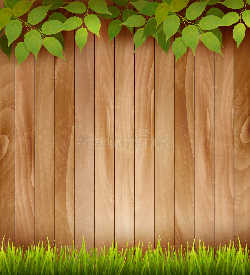 Natural wooden background with leaves and grass. Vector stock illustration