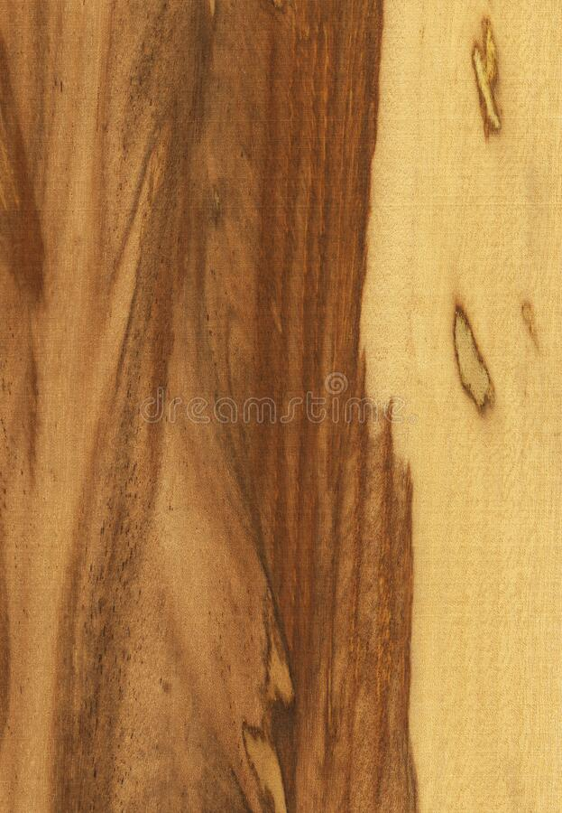 Natural wooden texture background, marblewood royalty free stock images