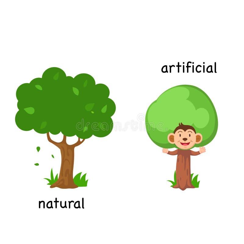 Naturale ed artificiale opposti illustrazione vettoriale
