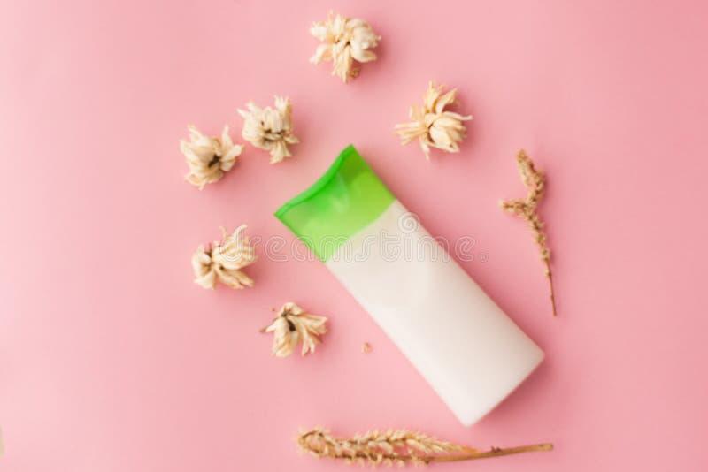Naturale pulisca il fronte di erbe cosmetico crema, idratante che della lozione del trattamento dello skincare del corpo la cosme fotografia stock libera da diritti