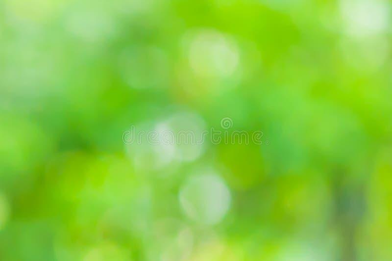 Naturale verde vago fotografia stock