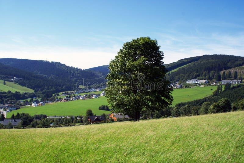 Naturaleza alemana. imagenes de archivo