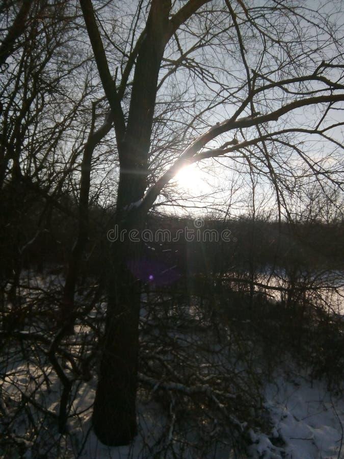 Naturaleza búlgara 4 imágenes de archivo libres de regalías