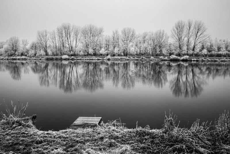 Naturaleza congelada por el río Elba-Celakovice, representante checo imágenes de archivo libres de regalías