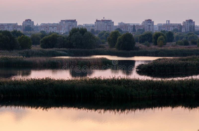 Naturaleza contra la ciudad, lago salvaje cerca de la vecindad fotos de archivo