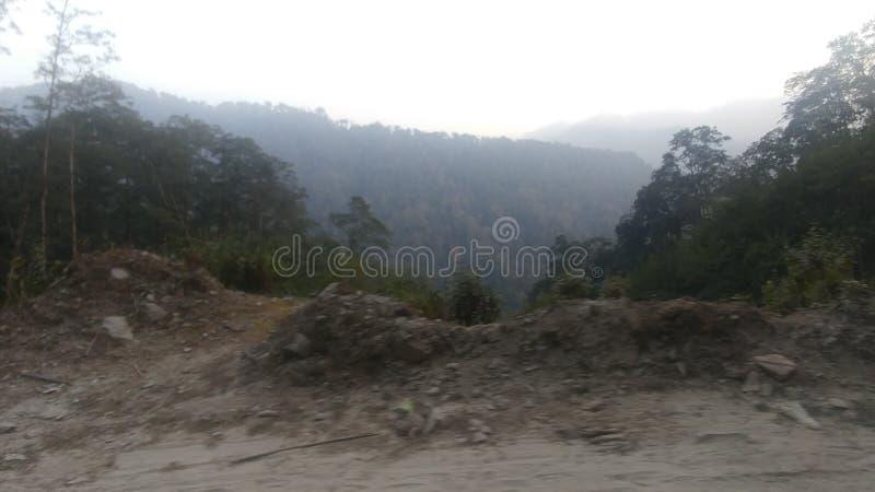 Naturaleza de belleza de Darjeeling India imagen de archivo libre de regalías