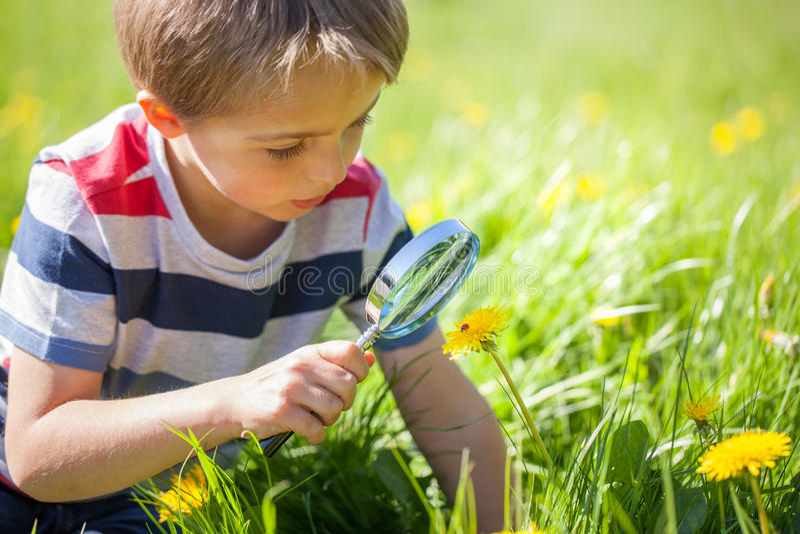 Naturaleza de exploración del niño foto de archivo
