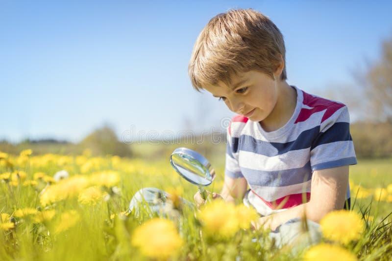 Naturaleza de exploración del niño en un prado fotografía de archivo
