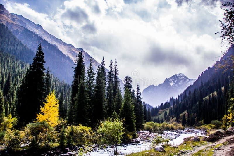 Naturaleza de Kirgiz del área de Kol del Ala imagen de archivo libre de regalías