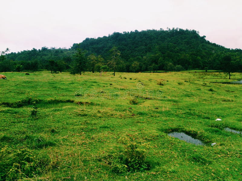Naturaleza de la belleza de Suli Lake foto de archivo libre de regalías