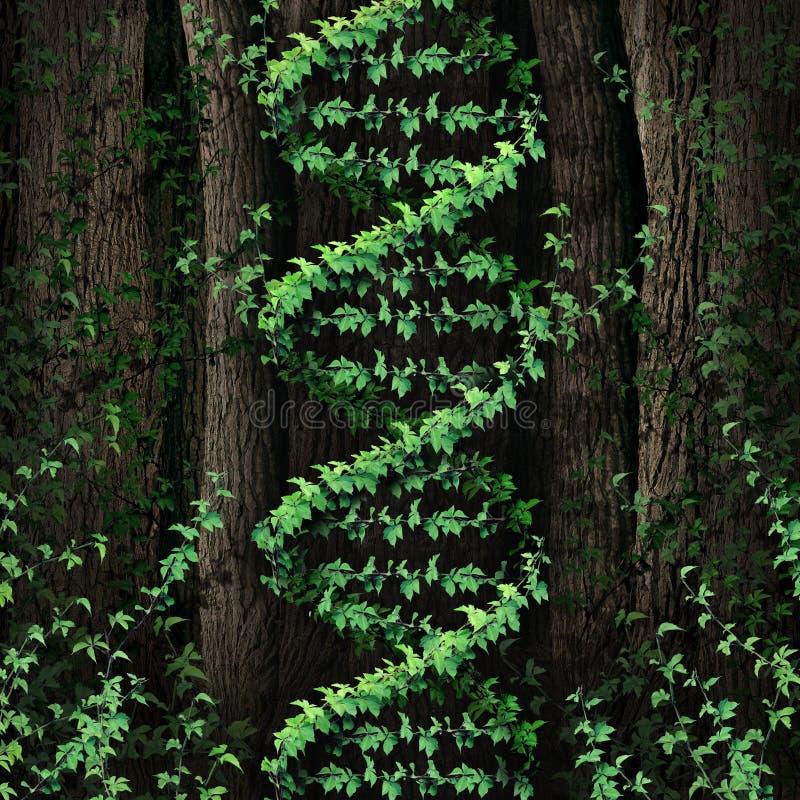Naturaleza de la DNA ilustración del vector