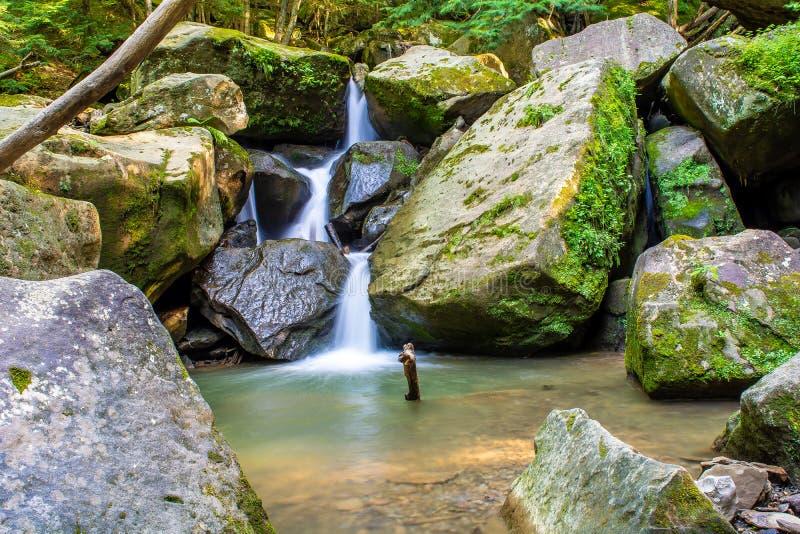Naturaleza de las cataratas silvestres imagen de archivo