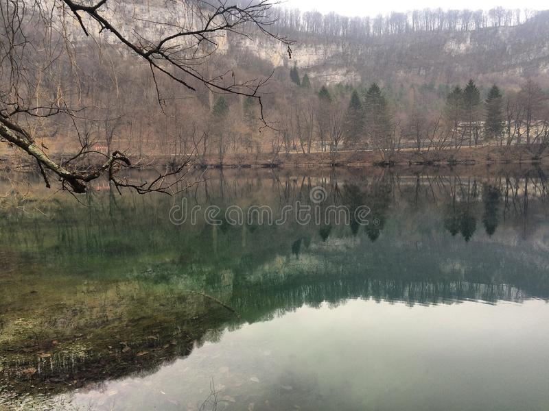Naturaleza del árbol del paisaje de la montaña del lago fotos de archivo