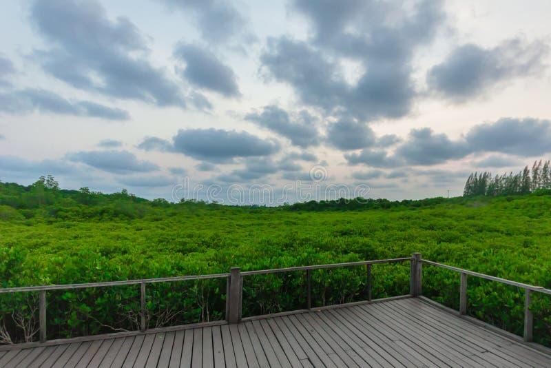 Naturaleza del cielo fotografía de archivo libre de regalías