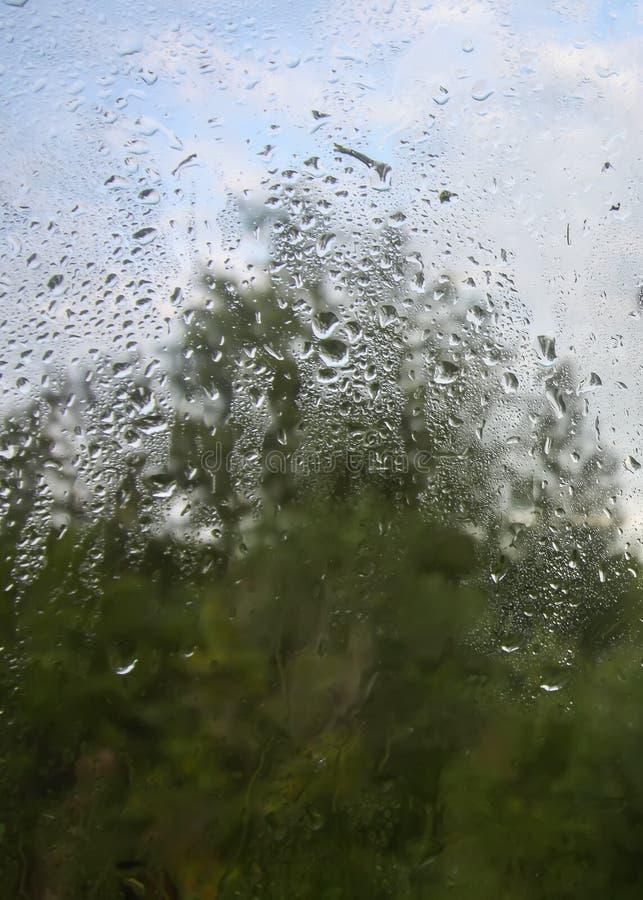 naturaleza del otoño detrás del vidrio mojado con gotas de lluvia imagen de archivo libre de regalías
