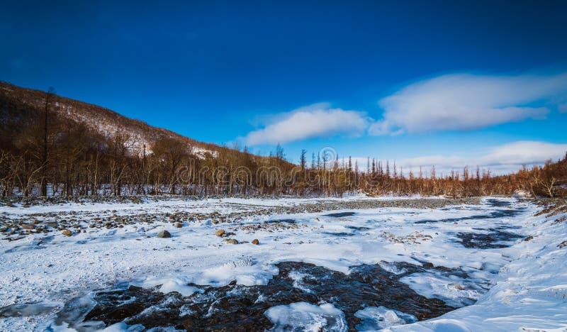 Naturaleza del paisaje fotografía de archivo libre de regalías